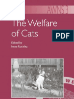 The Walfare of Cat