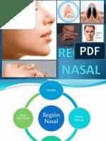 Región Nasal