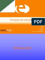 44945_179739_Principios de hidrostática