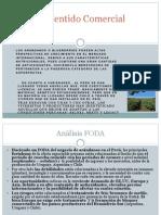 Perfil Produccion de Arandanos en Ancash