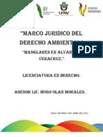 Mangles de Alvarado
