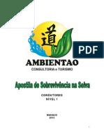 Manual Sv - Ambientao