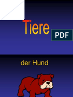 0tiere