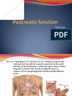 Pancreas -Enzyme and Function