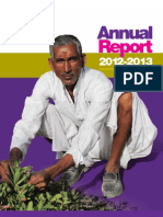 ICRAF 2012-13 Annual Report-8