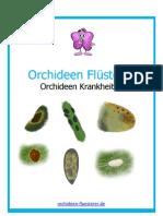 Orchideen Krankheiten
