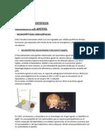 FACTORES OREXIGÉNICOS Y AMBIENTALES DEFINITIVO