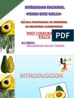 Diapositivas de Frutas y Hortalizas-palta