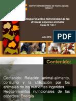 Requerimientos Nutricionales Energia