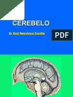 7ma Clase Neuro - Cerebelo - Dr. Hinostroza