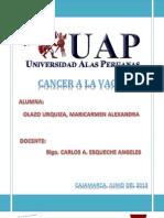 Cancer a La Vagina