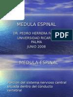 8va Clase Neuro - Medula Espinal - Dr. Herrera