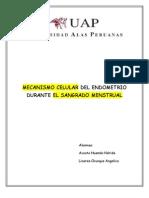 Mecanismo Celular Del Endometrio Durante El Sangrado Menstrual