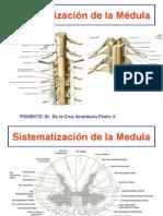 10ma Clase Neuro - Sistematizacion SN - Dr. Pedro de la Cruz