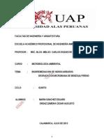 Biorremediacion de Hidrocarburos - Degradacion Microbiana de Benzo(a) Pireno
