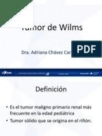 7.-_tumor_de_wilms_-_17072