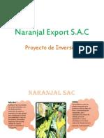 Proyecto Inversion El Guille 2