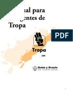 317 Manual Tropa 2006