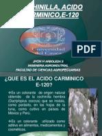 Cochinilla, Acido Carminico,E-120