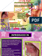 Cancer Oral Patologia