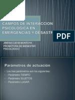 Campos de Interaccion Psicologica en Emergencias y Desastres (1)