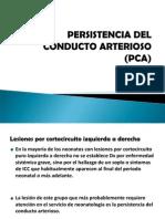 pca03-090310165202-phpapp02