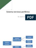 43049913 Sistema Nervioso Periferico y Plexos
