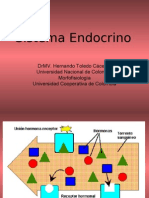 Ciclos Endocrinos Red