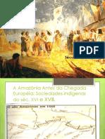 Invasão e Conquista da Amazônia pelos Europeus