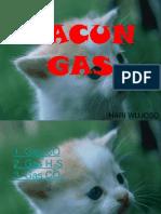RACUN GAS