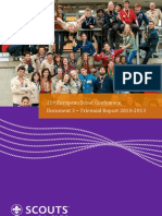 Triennial Report 2010-2013