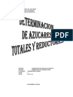 Informe de Azucares