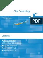 11.Fo_bt1002_e01_1 Lte Fdd Ofdm Technology