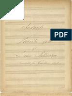 Andante Sonata Op 28 Beethoven