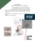 Actividad_Nº_1_prueba_del_sensor_de_temperatura