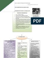 Tema 2 Principios Elementales Del Medio Juego-el Ataque Al Rey