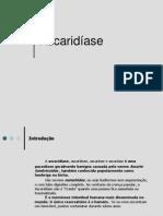 ascaridase-110423130612-phpapp02