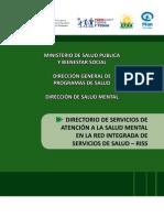 Salud Mental MSPBS - Directorio Completo