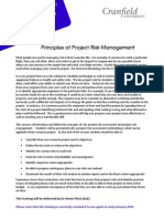 Principles of Project Risk Management