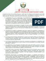 JULIO Pronunciamiento SUPP 2013 Copia