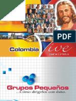 Seminario Grupos Pequeños Completo (1-10)