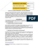 GuiaApexificacionyApexogenesis003
