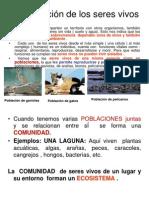 Organizacin de Los Seres Vivos 1192988574248716 3