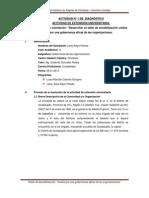 Informe Final de Gobernanzas