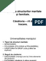 14230396 Tipologia Structurilor Maritale Si Familiale