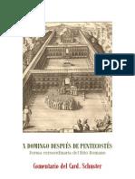 X DOMINGO DESPUÉS DE PENTECOSTÉS. Card. Schuster