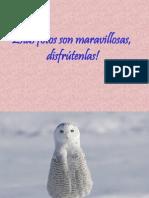 LFGV Animalets