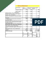 Plan de Afaceri Mihai 2012_Costul Proiectului