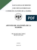Anatom a de La Madera Primera Parte