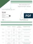 Lap Evolution Chart